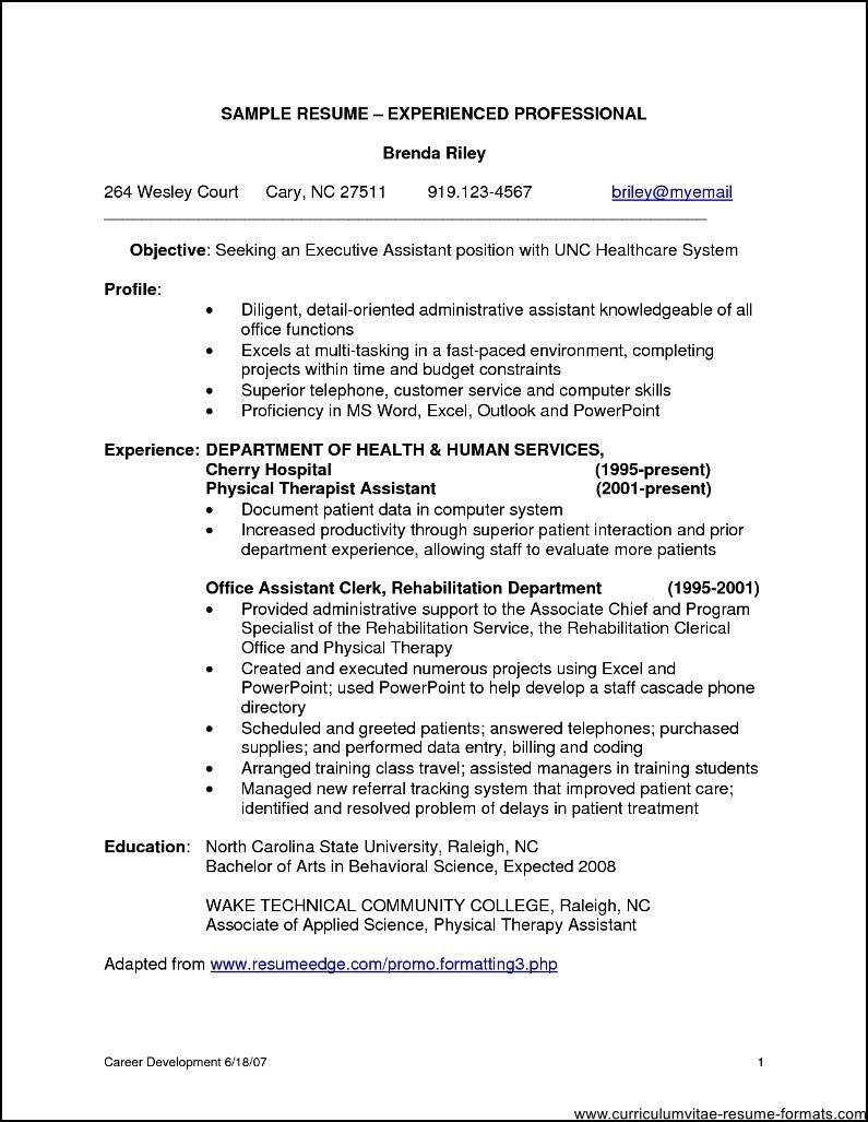 25 Elegant It Professional Resume Samples Best Resume Examples