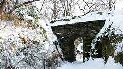 Central park in snow4