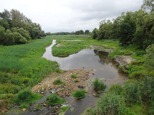 Река Гжелка. Вид с моста Егорьевского шоссе