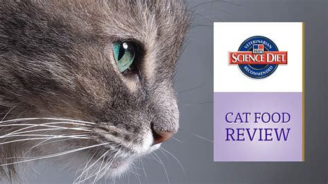 hills science diet cat food review updated