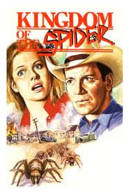 Spider Solitär Kostenlos Downloaden Deutsch