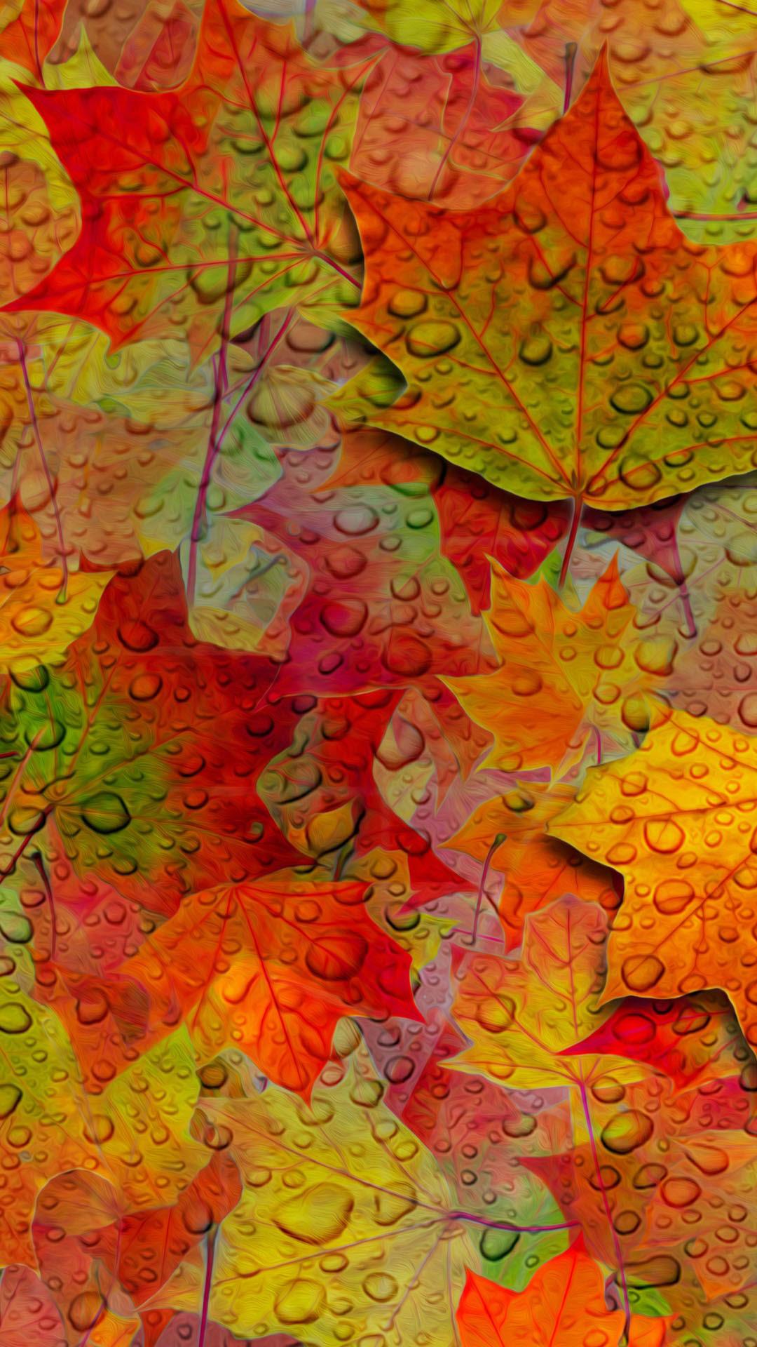 Fall iPhone Wallpapers   PixelsTalk.Net