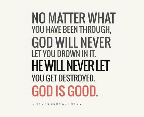 Quotes About God Plan 233 Quotes