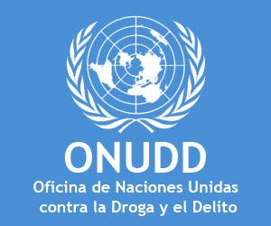 Oficina de las Naciones Unidas contra la Droga y el Delito (ONUDD)