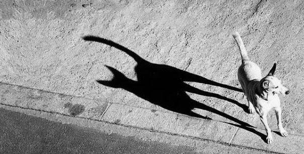 Όταν μια σκιά αλλάζει όλη την εικόνα (6)