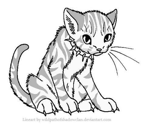 warrior cat coloring pages images  pinterest