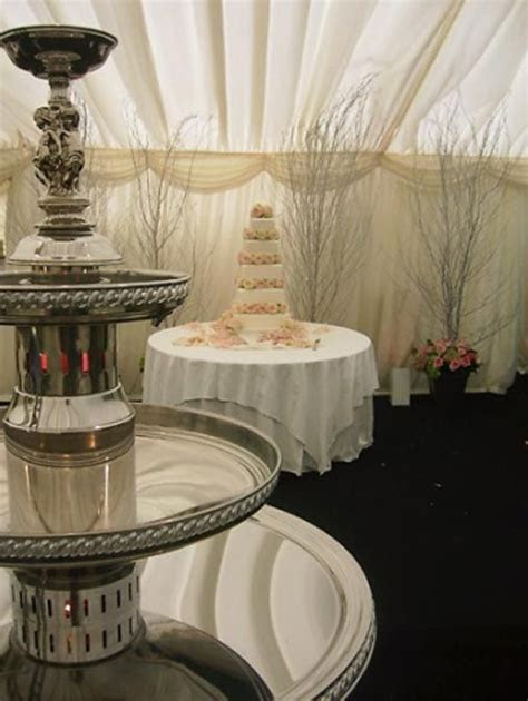 Apex Fountains on   Cakes, Champagne and Champagne fountain