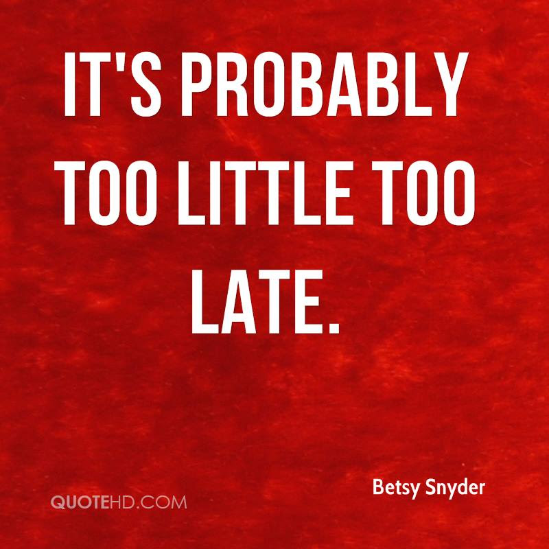 Betsy Snyder Quotes Quotehd