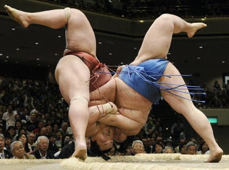 Pildiotsingu fit sumo wrestlers tulemus