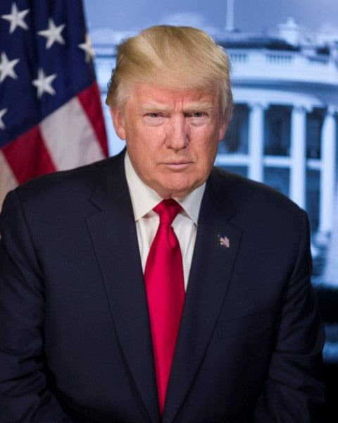 djt official Small