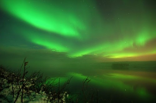 aurora and fog