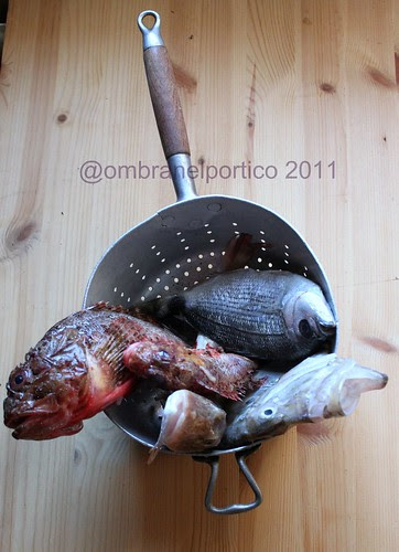 Pesce x bouillabaisse