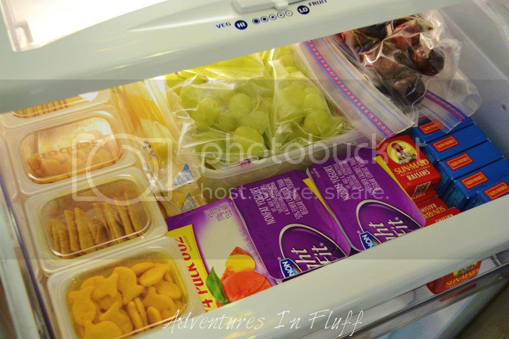 Put Snack Containers In Fridge, Cabinet, or School Lunch Bag