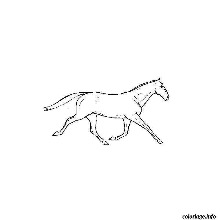 Coloriage Cheval Qui Galope Jecoloriecom