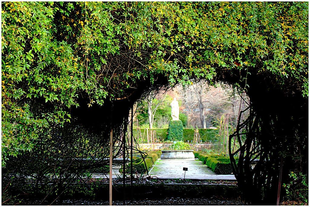 Jardín Botánico en enero