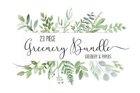 Watercolor Greenery Botanical clip art PNG Bundle