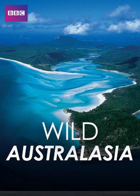 Wild Australasia - Season 1