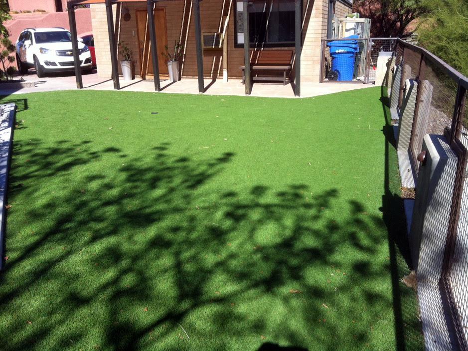 Synthetic Lawn Winter Garden Florida Landscaping Backyard