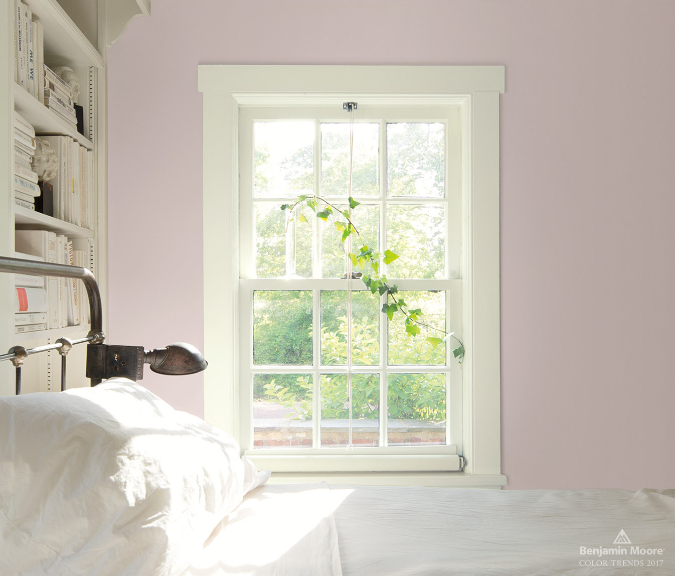Benjamin Moore's 2017 Paint Color Forecast - Provident ...