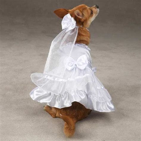 View Pet Wedding Clothes   Yappily Ever After Dog Wedding