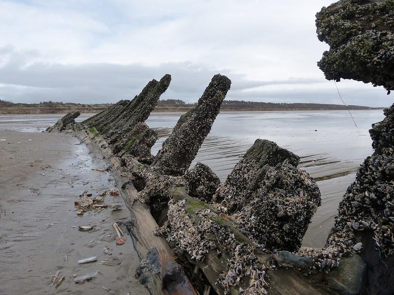 P1070024 - Shipwreck, Cefn Sidan