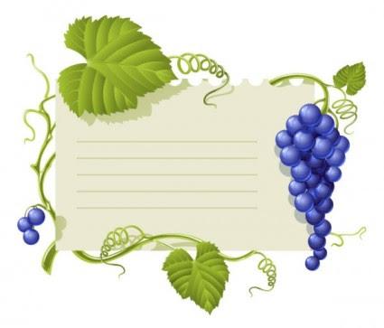 87 Gambar Anggur Vektor Terlihat Keren