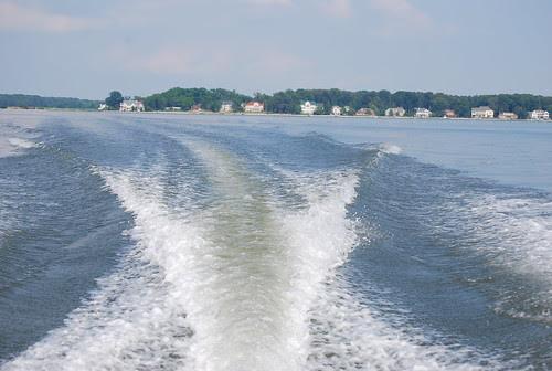 Skimming the Potomac