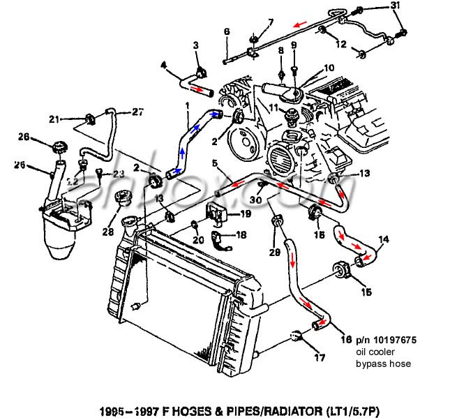 96 Camaro Engine Diagram Wiring Diagram Modernize Modernize Frankmotors Es
