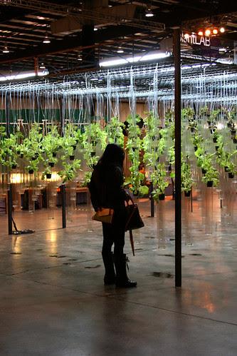 uc berkeley plant lab