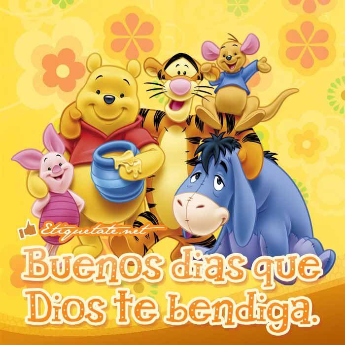 Videos De Gatitos Con Frases De Amor Gapura J