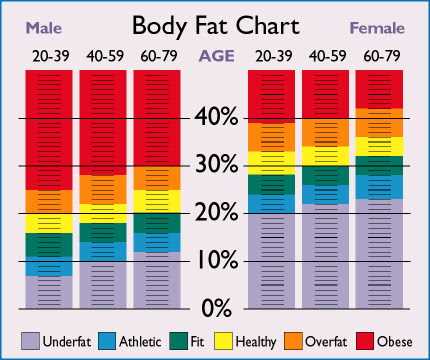 body fat percentage for my age