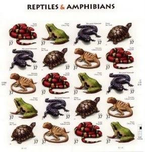 Reptiles y Permacultura