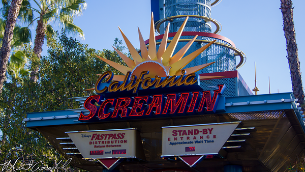 Disneyland Resort, Disney California Adventure, Paradise Pier, California, Screamin', Scream, Cam