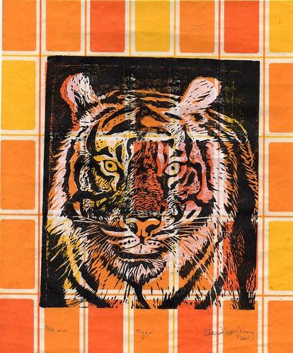 tiger431