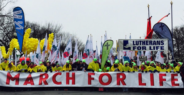 2016 March for Life (Photo: Twitter/Mollie Hemingway)