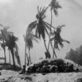 04 mosquito history - south pacific