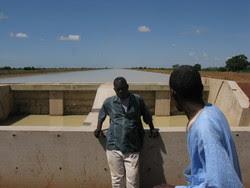 Líderes campesinos de Sexagon, una organización de agricultores de Office du Niger, Mali ubicados al final del canal Malibya de 40 km de largo.