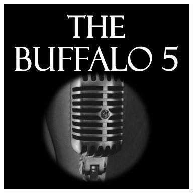 The Buffalo 5 (5 piece wedding band with a female lead