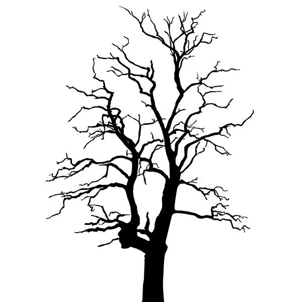 Free Stock Photos Rgbstock Free Stock Images Silhouette Tree 2