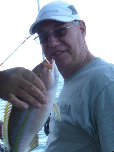 Rob's snapper