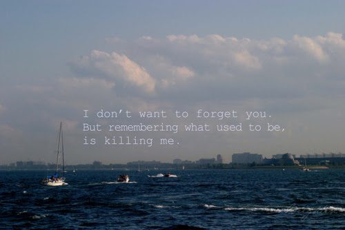 I Dont Want To Forget You Fact Quote Graphics99com