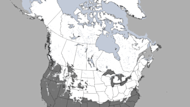 This image shows snow covering nearly half of the U.S. and most of Canada on March 26, 2013.