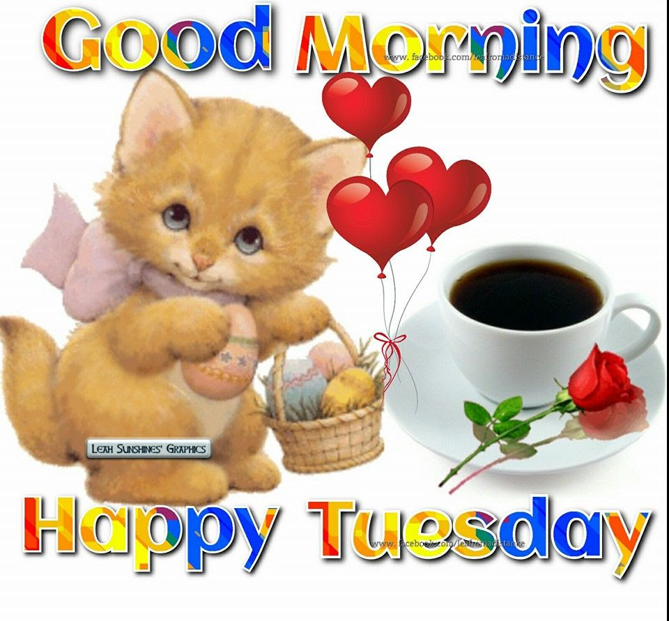 Cute Good Morning Happy Tuesday Pictures Photos And Images For