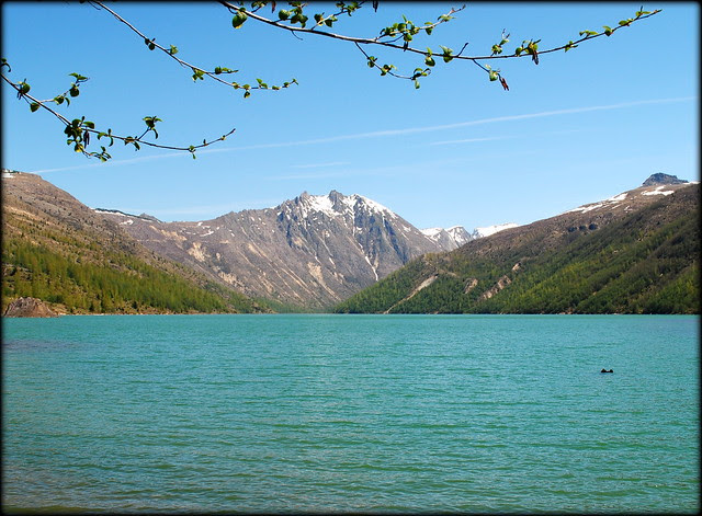Coldwater Lake - Mt. St. Helens