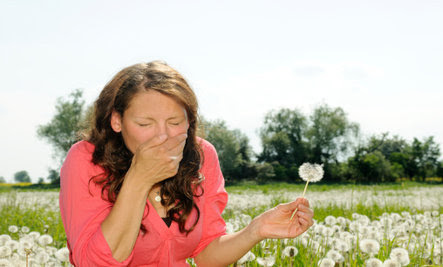 13 Foods That Fight Allergies