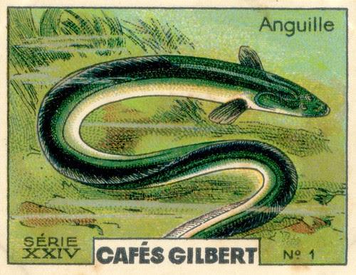 gilbert rivière 1