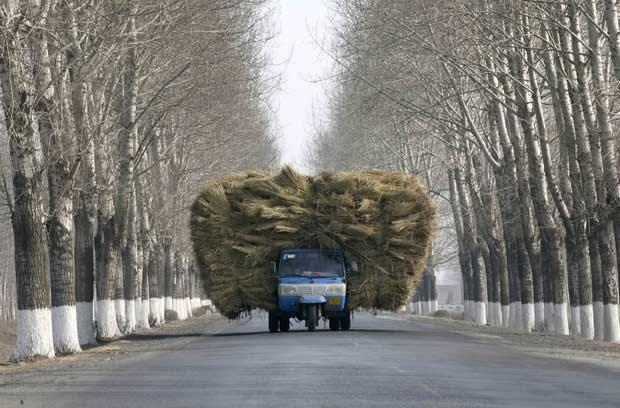 Em 11 de janeiro de 2008, caminhão foi flagrado sobrecarregado em uma estrada nos arredores de Shenyang, na China. A carga praticamente bloqueava toda a pista. (Foto: Reuters)