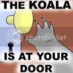 Koala Challenge 2