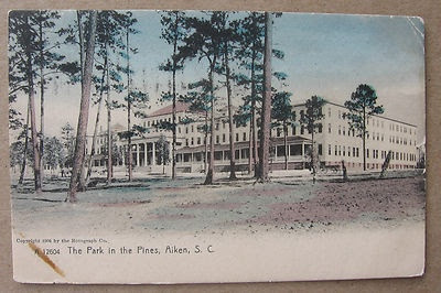The Park in the Pines, Aiken South Carolina, 1904 Rotograph Undivided #A12604 m