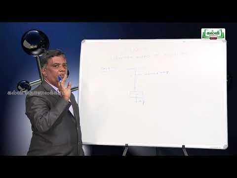 NEET  JEE Physics Newton's Laws Of Motion Kalvi TV,